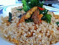 สูตรอาหารไทย : ข้าวผัดปลาสลิดใบกระเพรา อร่อยเหาะ